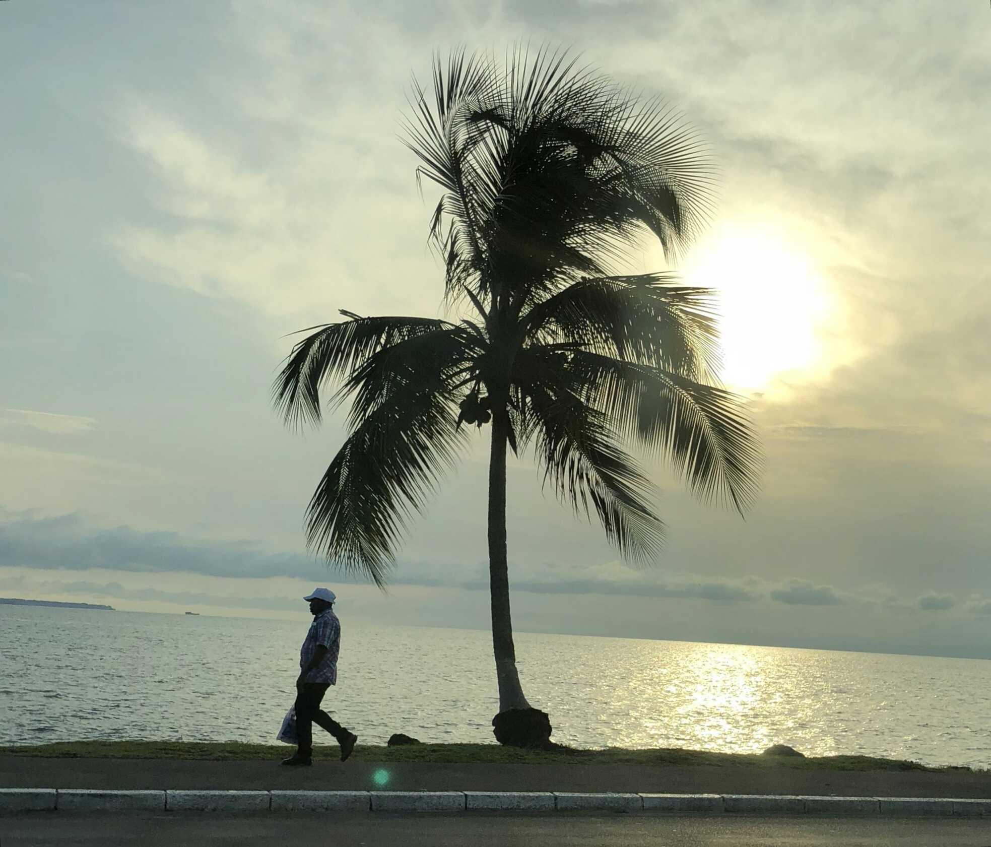 Libreville, Métropole Où Il Fait Le Plus Bon Vivre En